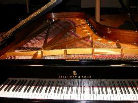 Koncert_dubrovackog_pijanista.jpg