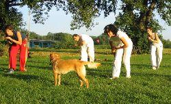 Capoeira_nasip.jpg