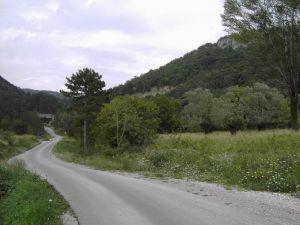 Cesta_koja_vodi_izmedju_brda_na_kojima_se_uzdizu_Crni_Grad_i_Beli_Grad.JPG
