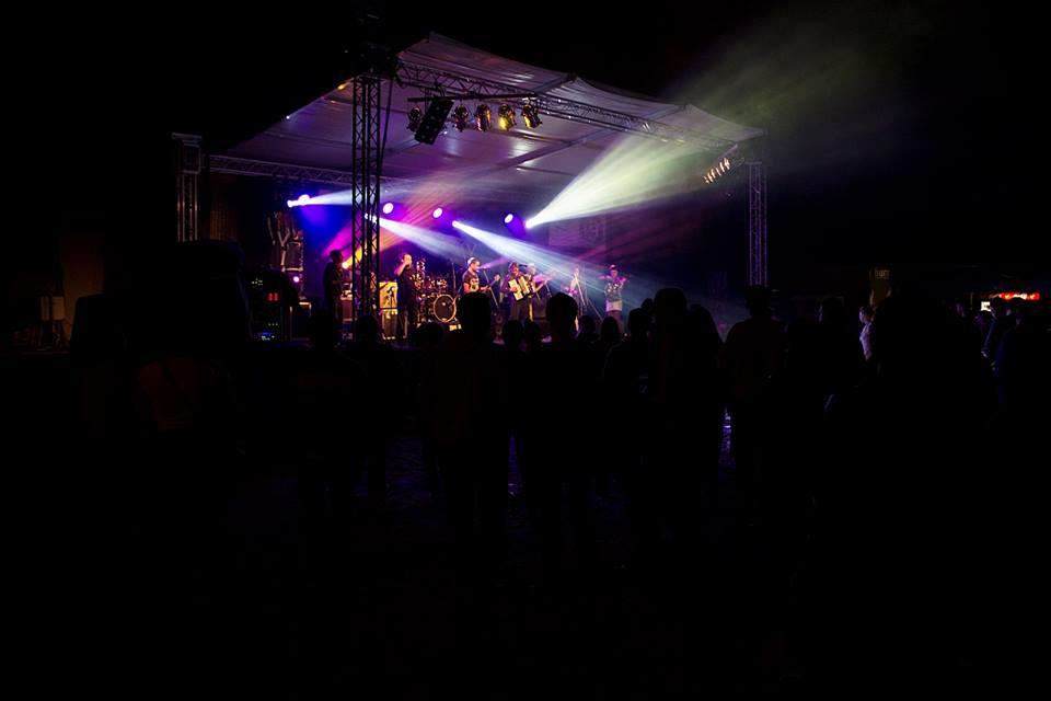 drvored_skaville_2014_festival
