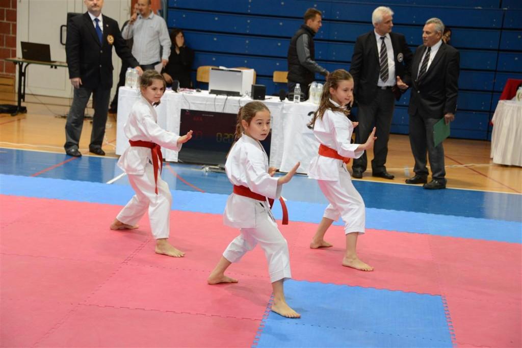KŽopen 20142_karate_KTC_turnir
