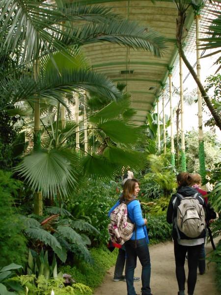 Studenti(ce) obilaze staklenik s tropskom vegetacijom u Lednicama (foto: dr.sc. Siniša Srečec)