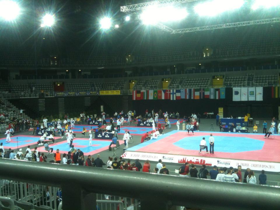 taekwondo_croatian_open_2014_fabijan_brcic_0