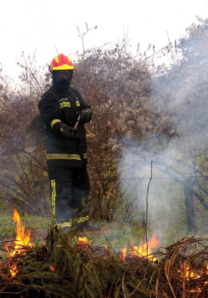spaljivanje biljnog otpada_vatrogasci