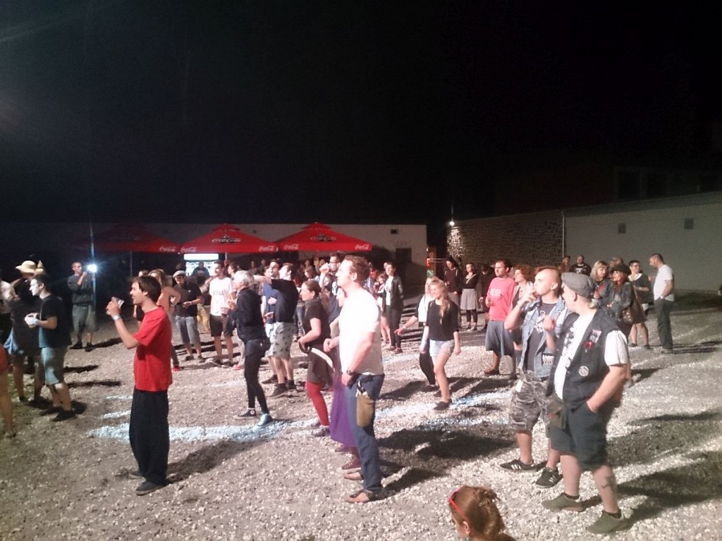 Skaville_Festival_2015_publika_petak