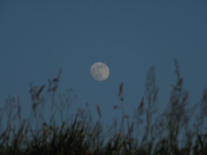 Uz međunarodnu noć promatranja Mjeseca (foto: R.Matić)