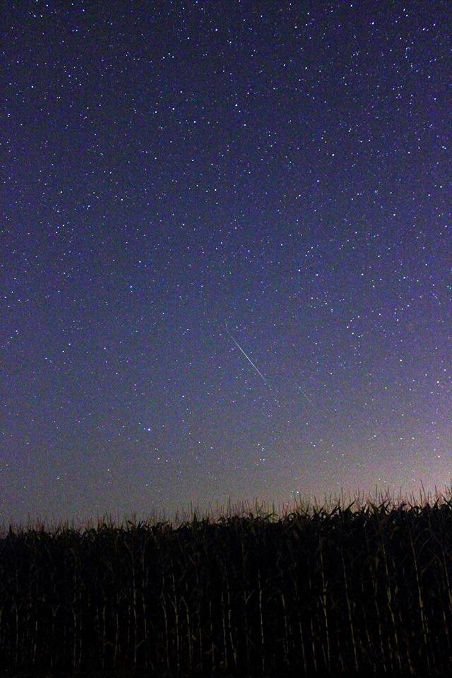Promatranje Perzeida u noći između 11. i 12. kolovoza na polju pored Križevaca (foto: Martin Vujić)