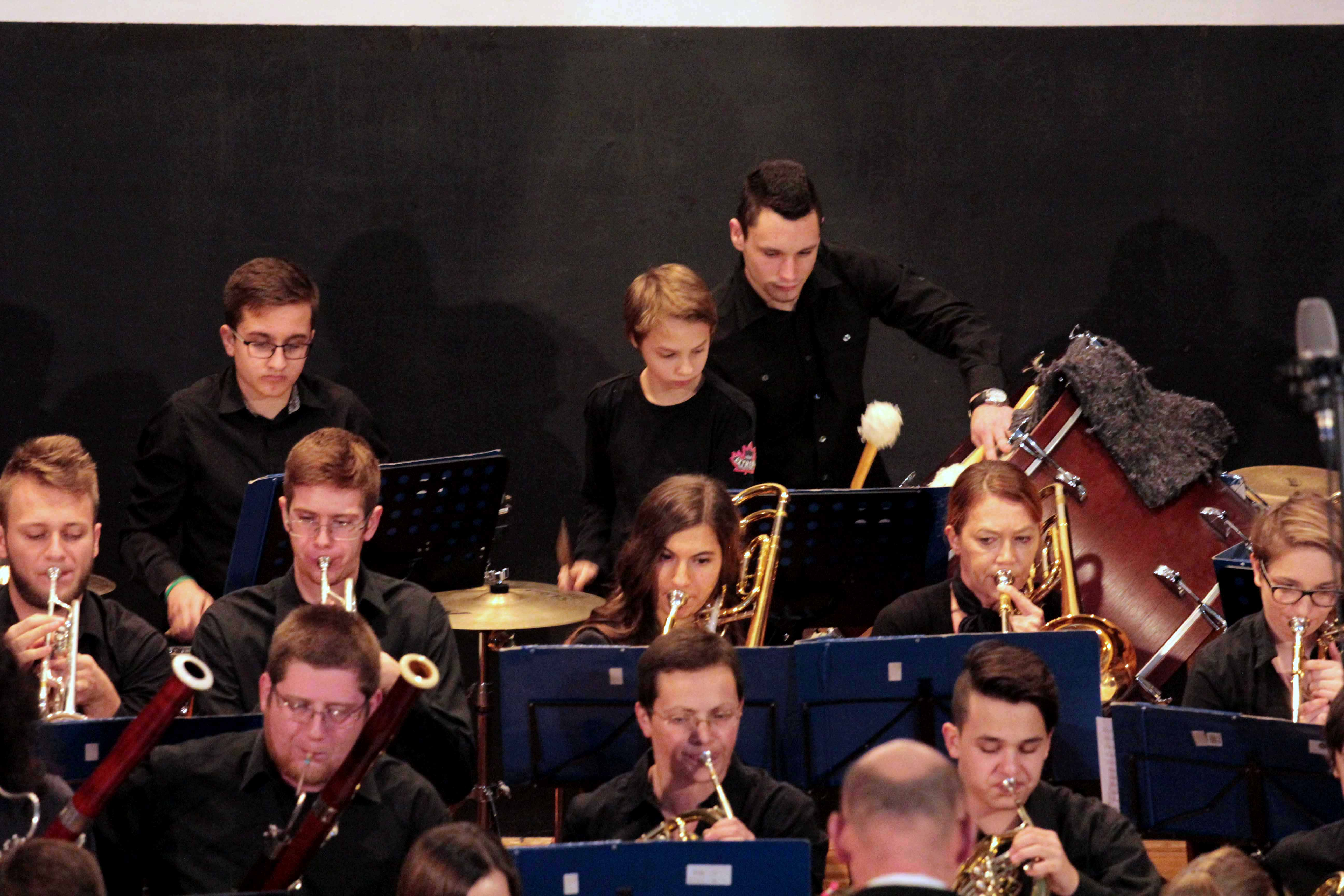 5-godisnji-koncert-puhacki-orkestar-2016-by-milan-mimi-petic
