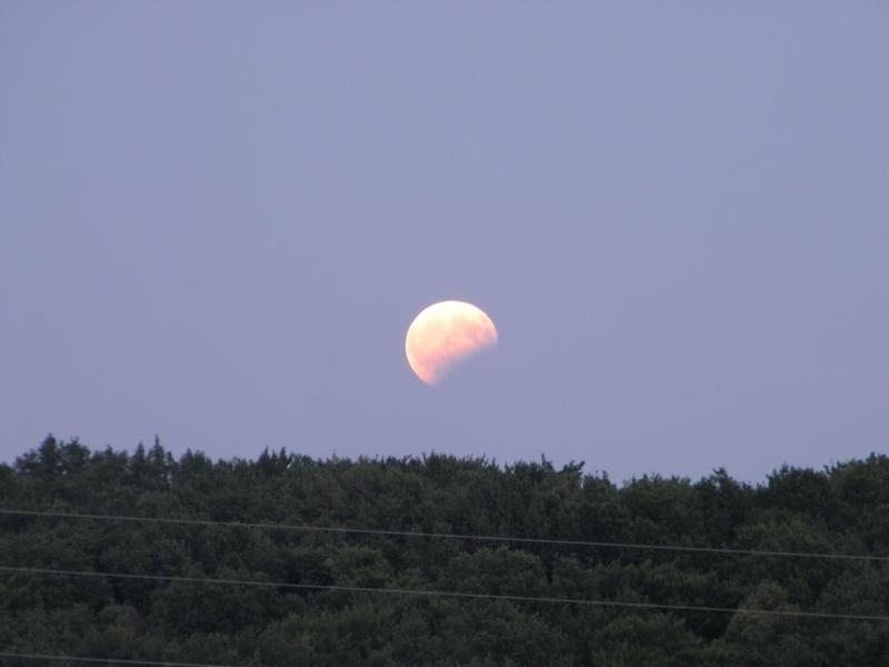 Djelomična pomrčna Mjeseca iznad Ratarske šume 7. kolovoza 2017. (foto R.Matić)